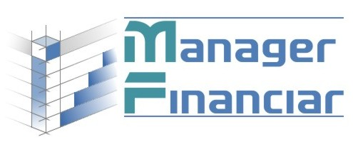 Manager Financiar ERP